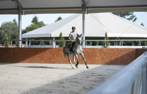 maneggi coperti e tondini equitazione